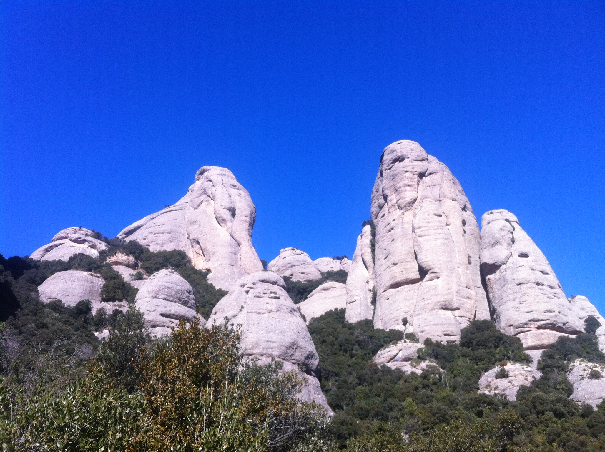 5h excursion with minivan – Montserrat private tour