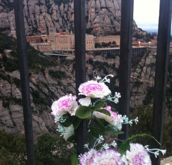 8 hour excursion – Montserrat and Cavas with luxury minivan